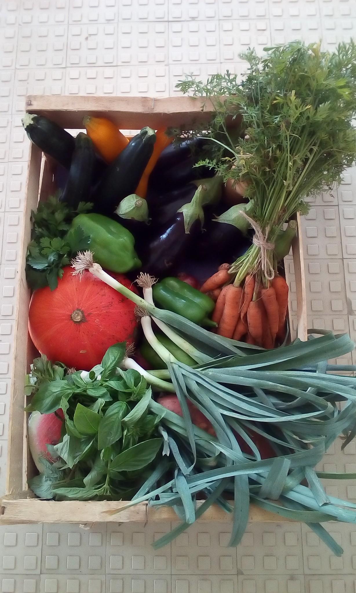 Panier de légumes et fruits 9 kg (à commander au plus tard le lundi soir)
