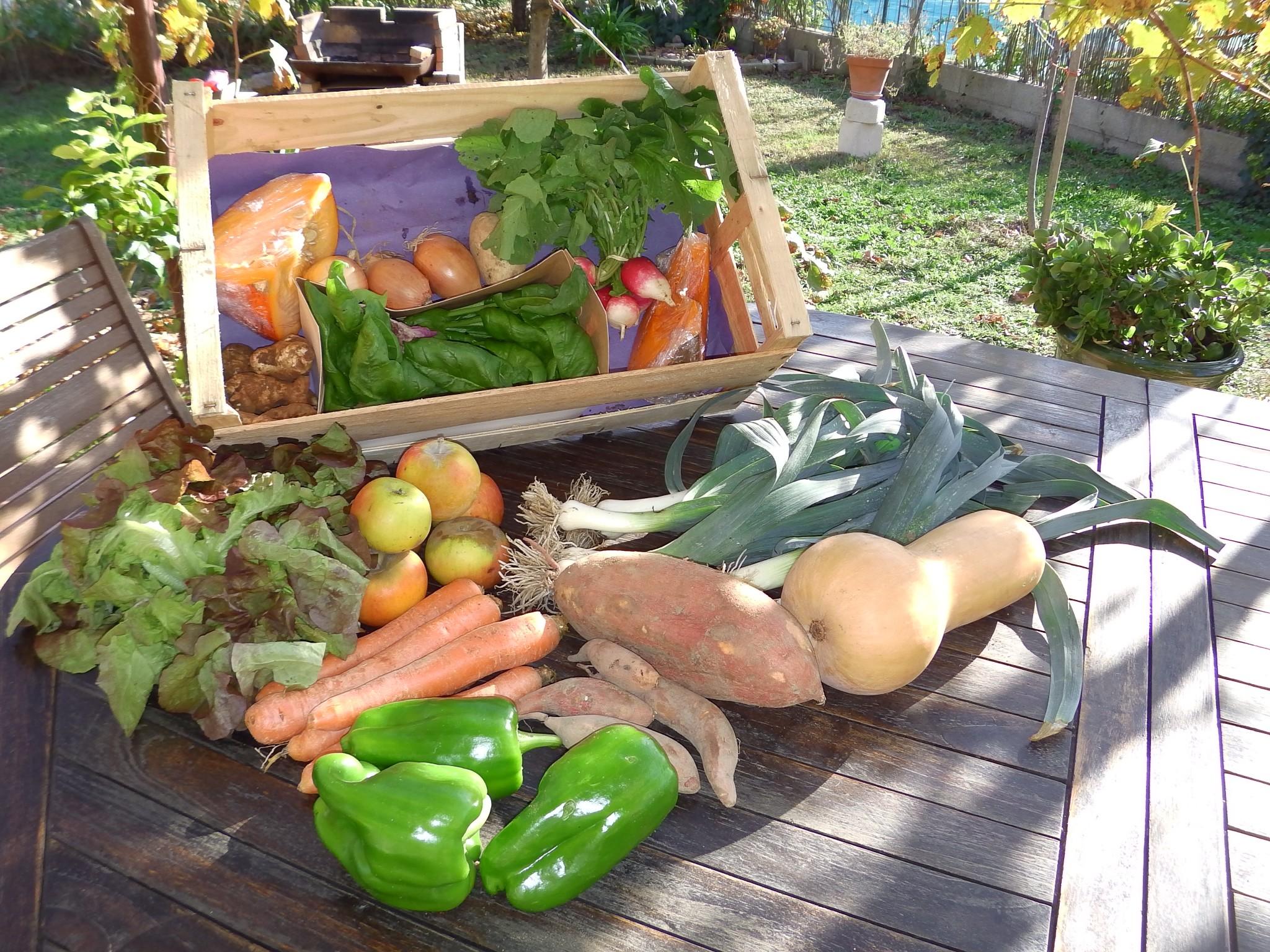 Panier de légumes et fruits 5 kg (à commander au plus tard le lundi soir)